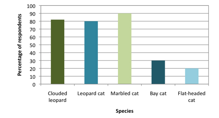 The percentage of people able to name the species of Borneo's wild cat - Copyright and All Permission belong to Andrew Hearn