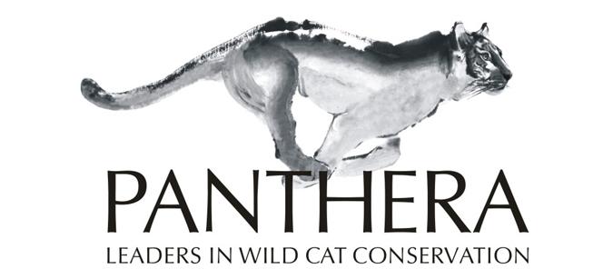 Panthera_Logo_wider