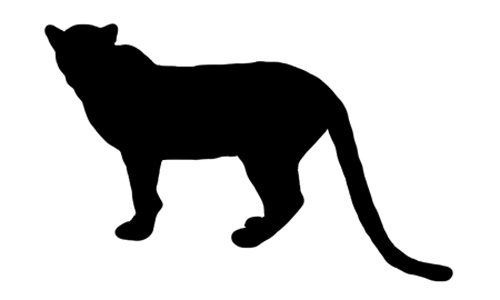 Mountain Lion Silhouette for Pinterest Grizzly Bear Face Logo