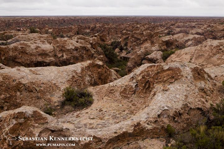 Altiplano at about 13,300 feet, Ciudad de Piedra, western Bolivia