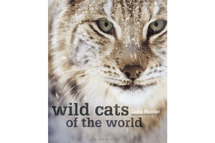 Wild Cats of the World, written by Luke Hunter, published by Bloomsbury Natural History, copyright 2015